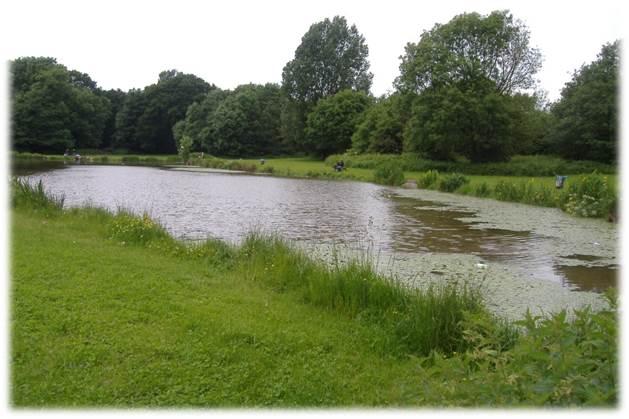 Fishing Licence  Parc Coed-y-Nant,  Pentwyn, Cardiff